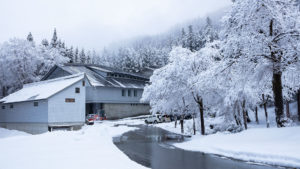 津南醸造 雪の外観